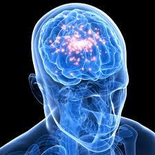 drugs-brain
