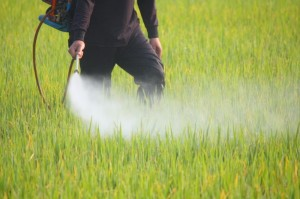 Applying pesticide to fields