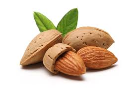 Once almonds were very nutritious