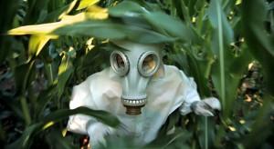 Farming Monsanto Crops