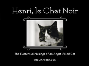 Herni, le Chat Noir: The Existentialist Musings of an Angst-Filled Cat