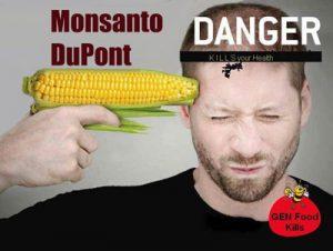 gmo-danger